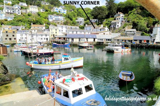 Sunny Corner The Warren